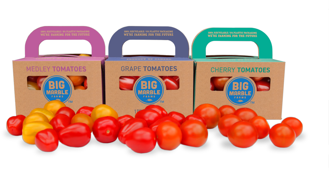 Cherry tomatoes in snack pint containers