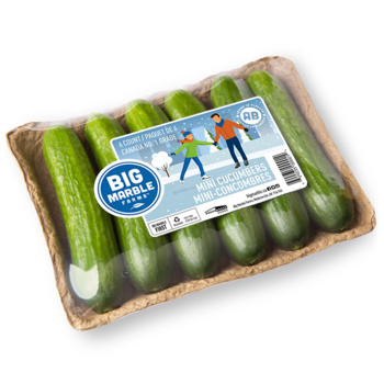6 Count Mini Cucumber Tray Winter